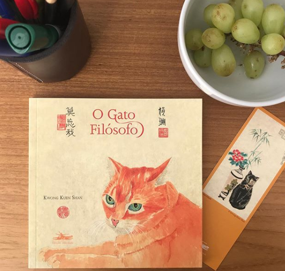 gato filosofo